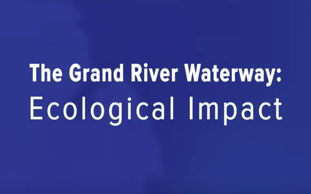 Dredging the Grand: Ecological Impact